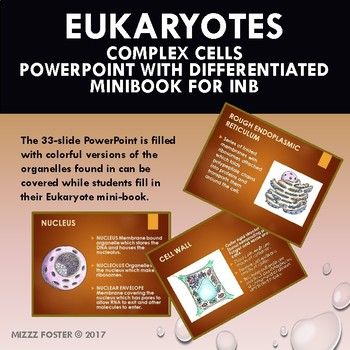 Eukaryote: Complex Cell, Organelles PowerPoint & Differentiated Mini-Book