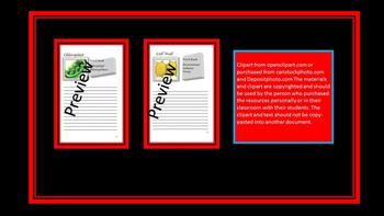 Eukaryote Organelle Booklet