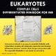 Eukaryotes: Complex Cells Differentiated Minibook for INB.