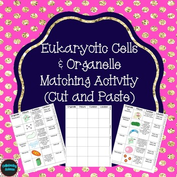Eukaryotic Cells Matching Activity (Cut and Paste)