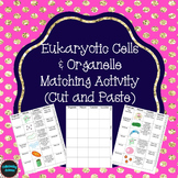 Eukaryotic Cells and Organelles Matching Activity (Cut and Paste)