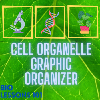 eukaryotic cell organelle graphic organizer by biolessons101 tpt. Black Bedroom Furniture Sets. Home Design Ideas