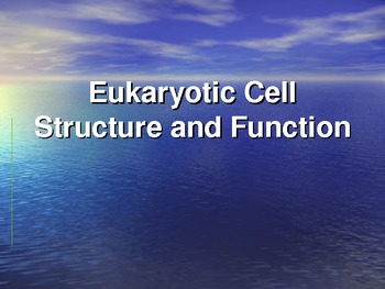 Eukaryotic Cell Structure and Function