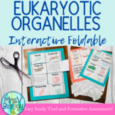 Eukaryotic Organelles Interactive Foldable