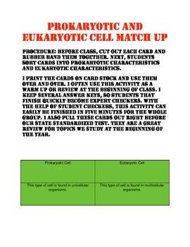 Eukaryotic and Prokaryotic Cell Match Up