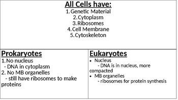 Eukaryotic vs. Prokaryotic T chart