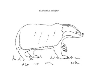 Badgers coloring pages | Free Coloring Pages | 270x350
