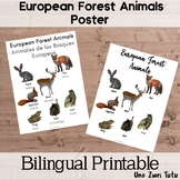 European Forest Animals Poster In English And Spanish