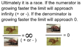 Evaluating Limits at Infinity Smart Notebook