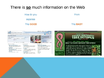 Evaluating Websites PowerPoint: A Tool for Internet Research