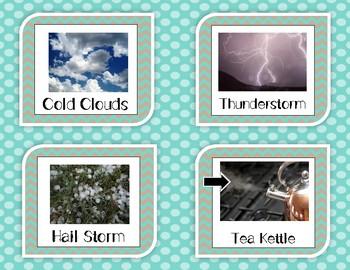Water Cycle Picture Card Sort: Evaporation, Condensation, Precipitation