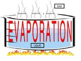 Evaporation Condensation Vocabulary Science Poster ELL