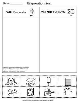 Evaporation Science Lesson and Experiment for Special Education FREEBIE
