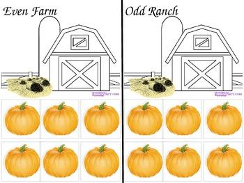 Even Odd Pumpkin Path