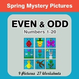 Even and Odd - Color By Number - Spring Mystery Pictures