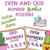 Even and Odd Numbers Poster Anchor Chart FREEBIE Cactus Su
