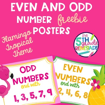 Even and Odd Numbers Poster Anchor Chart FREEBIE Flamingo Tropical Theme