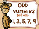 Even and Odd Numbers Poster Anchor Chart FREEBIE Safari Theme