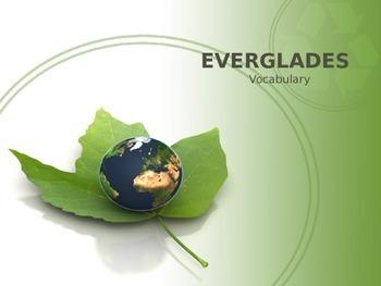 """""""Everglades"""" vocabulary"""