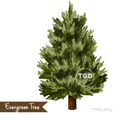 Evergreen Tree Clip Art, Hand painted clip art Printable Tracey Gurley Designs