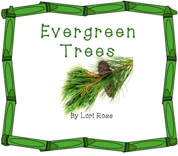 Evergreen Trees Smart Board
