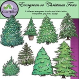 Evergreen Trees or Christmas Trees  #OctTpTClipLove