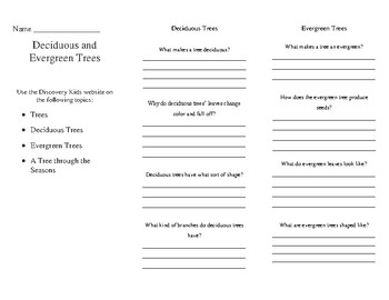 Evergreen and Deciduous Tree Brochure