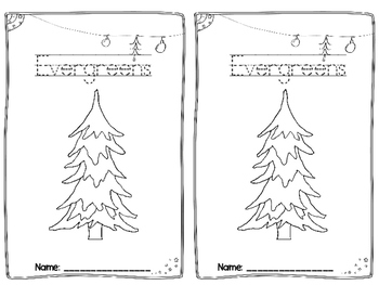 Evergreens: Can, Have, Are Foldable