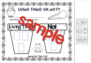 K, 1 Every Living Thing Has a Life Cycle (Science Ebook With Comprehension)