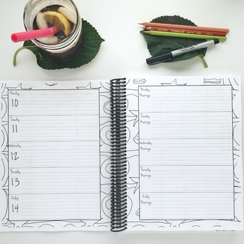 Every Teacher's Best Friend 13 Month Planner (Peach and Green Plaid Cover)