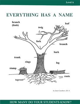 Everything Has a Name-Activity Pack Level A-Building Foundational Vocabulary