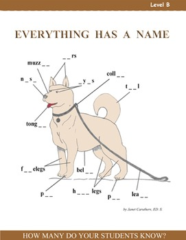 Everything Has a Name - Activity Pack Level B - Vocabulary and Phonics Skills
