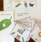 Everything Language Spring for Special Education, Autism, Speech Therapy