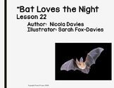 """Everything You Need to Teach Storytown Lesson 22 """"Bat Love"""