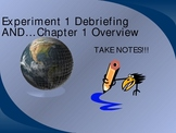 Evidence of Chemical Change - powerpoint, debriefing