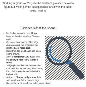 Evidence and Investigation Performance Task