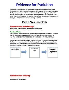 Evidence for Evolution Film Guide for Your Inner Fish Series *Editable*