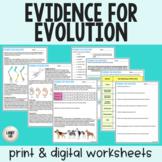 Evidence for Evolution - Reading & Worksheets - PDF & Digi