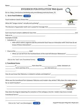 Evidence for Evolution Webquest by Biology Roots | TpT