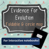 Evidence for Evolution Foldable Notes and Interactive Note