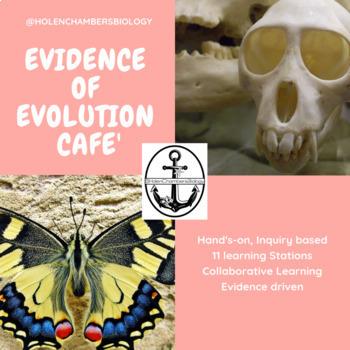 Evidence of Evolution CAFE' (11 station investigation), includes student journal