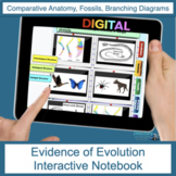 Evidence of Evolution | Fossils |  Digital Notebook | Dist