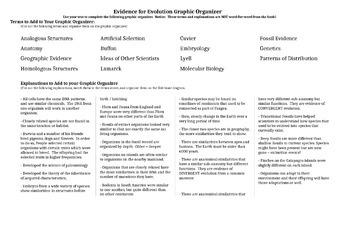 Evidence of Evolution Graphic Organizer / Notes / Fishbone Diagram