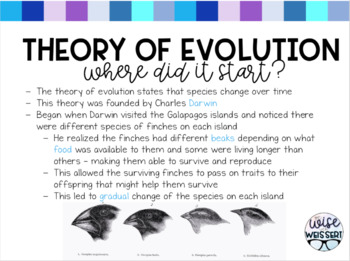 Evidence of Evolution Guided Notes with PDF Slides