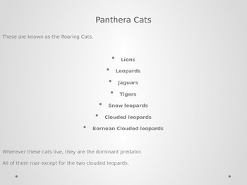 Mammals-Evoloution of Cats