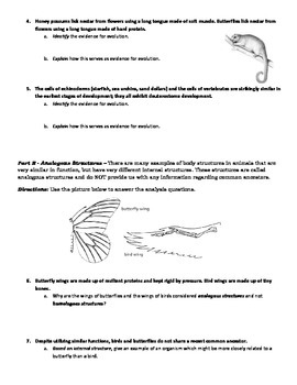 Evolution Activity - Evidence for Evolution Identification & Analysis (with KEY)