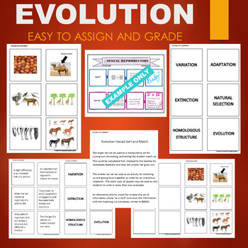 Evolution Adaptation Activity - Sort and Match