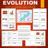 Evolution (Natural Selection, Adaptation, Variation, etc) Sort & Match Activity