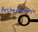 Evolution - Archeopteryx Lesson Plan