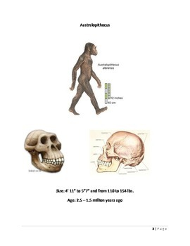 Evolution: Australopithecus